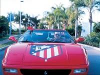 Ferrari-Torrente-2